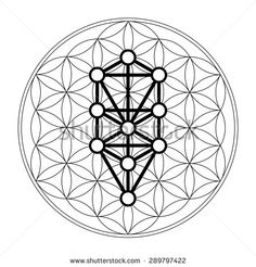 Kabbalah, 12 Sephiroth, tree of life, flower of life – stock vector - Modern Aliens, Palm Tree Tattoo Ankle, Tattoo Tree, Tree Drawings Pencil, Tree Drawing Simple, Geometric Trees, Willow Tree Figurines, Cloud Drawing, Tree Canvas