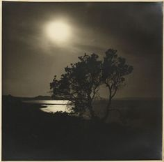 Night scene by beach from Camping trips on Culburra Beach by Max Dupain and Olive Cotton 1937