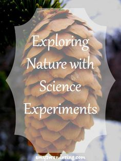 Exploring Nature with Science Experiments - add a little hands-on fun to your nature study Science Activities For Kids, Nature Activities, Science Lessons, Hands On Activities, Educational Activities, Science Experiments, Science Week, Mad Science, Science Ideas