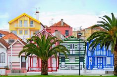 Costa Nova do Prado, Portugal Spain And Portugal, Portugal Travel, Spain Travel, Places Around The World, The Places Youll Go, Places To Visit, Around The Worlds, Travel Pictures, Travel Photos