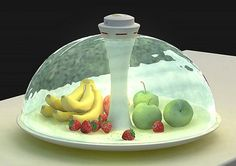 Water Shade: The Fresh Fruits Storage Concept  ---omgoodness!  just a lil futuristic but a nice concept...I can see it for a family reunion in the south!  lol