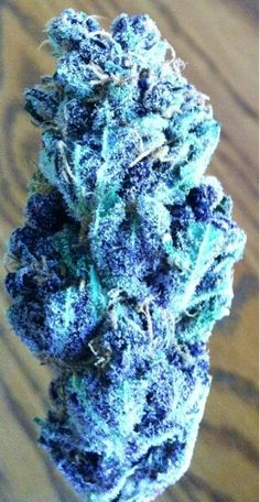 blue kush.damn PhotoShop or what like damn how have I not seen this around town I live in Vancouver WA home of the green .