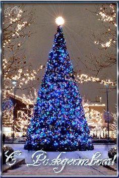 Рождество Христово. Рождественская елка...