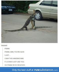 Tumblr Funny, Funny Memes, Jokes, Videos Funny, Funny Cute, Really Funny, Haha, I Love To Laugh, Laughing So Hard