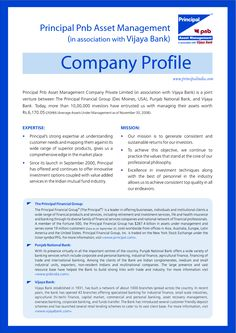 Business Profile Template Profile Company Profile