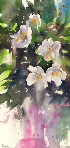 watercolor - Cherry Blossoms, by Kanta Harusaki