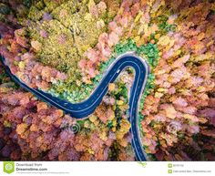 Photo about Winding road trough the forest. Hi mountain pass in Transylvania, Romania. Aerial view from a drone. Image of forest, natural, hills - 82707102 Transylvania Romania, Mountain Pass, Winding Road, Top View, Aerial View, Fields, Stock Photos, Image, Trees