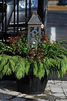 Make A Holiday Container Garden Christmas Decor Christmas Urns Christmas Window Boxes, Winter Window Boxes, Christmas Urns, Christmas Planters, Christmas Arrangements, Outdoor Christmas Decorations, Rustic Christmas, Winter Christmas, Christmas Lights