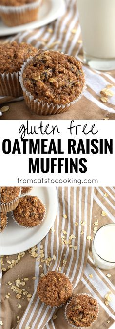 Made with rolled oats, raisins, unsweetened applesauce and almond butter, these Gluten Free Oatmeal Raisin Muffins are ready in only 30 minutes and are the perfect after-dinner dessert or brunch pastry. Gluten Free Carrot Cake, Gluten Free Muffins, Gluten Free Baking, Gluten Free Breakfasts, Gluten Free Desserts, Gluten Free Recipes, Oatmeal Raisin Muffins, Oatmeal Scotchies, Oatmeal Yogurt