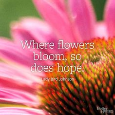 "Quotes ""Where flowers bloom, so does hope."" -Lady Bird Johnson""Where flowers bloom, so does hope. Short Flower Quotes, Short Nature Quotes, Flower Quotes Love, Floral Quotes, New Quotes, Love Quotes, Inspirational Quotes, Quotes Images, Heart Quotes"