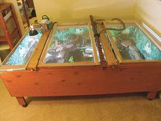 Coffee table/tortoise cage=Genius!!