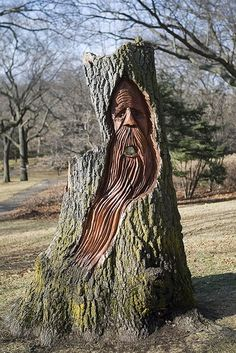 Tree Carvings Faces   Cool Pictures   Pictures by Ribbu