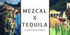 How can one distinguish Mezcal from Tequila? Both born from the distillation of agave, those Mexican spirits also tell the story of a country, its culture and its origins. Between its mesoamerican and Spanish influences, what is the true heritage of those craft spirits that are a true success worldwide.