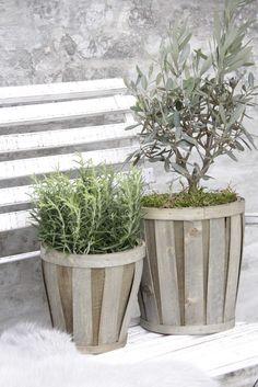 Chip basket flowerpots by Jeanne d'Arc Living.