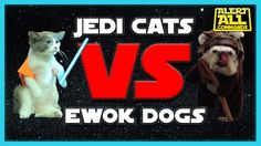 Which is cuter? Ewok Dog Costume vs Jedi Cat Costume http://cooldogcostumes.com/ewok-dog-costume-or-jedi-cat-costume/