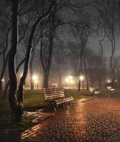 Outdoors Discover Illuminated Park at Night Nature Pictures Beautiful Pictures Beautiful Places Rain Photography Amazing Photography I Love Rain Autumn Rain Fall Images Rainy Night Beautiful Places, Beautiful Pictures, I Love Rain, Autumn Rain, Fall Images, Rain Photography, Amazing Photography, Rainy Night, Nocturne