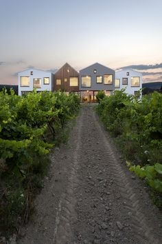 kindergarten over the vineyard - limbach slovakia - architekti.sk - photo by tomáš manina Beautiful Buildings, Beautiful Homes, Modern Buildings, Contemporary Architecture, Interior Architecture, Kindergarten Design, Bungalow, Townhouse, My House
