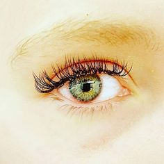 Beautiful green eyes and lashes