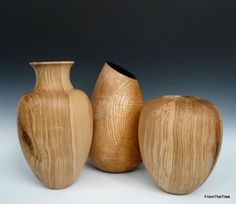 A group of olive ash forms
