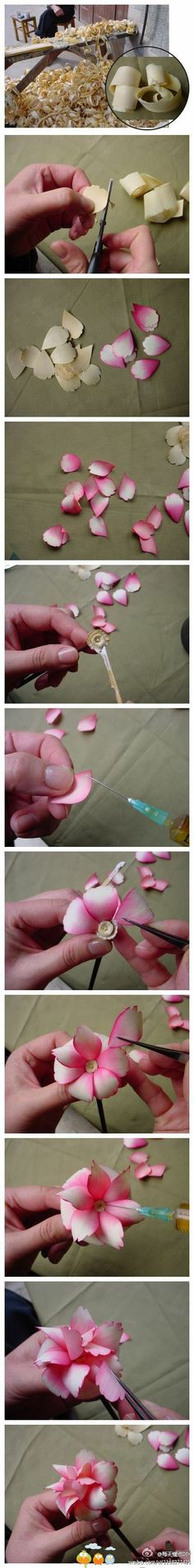 wood shavings rose