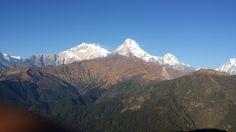 #Shorttrek #EasyTrek #GhorepaniPoonhillTrek #NepalShortTrekking #AnnapurnaHimalayapanorama #NepalShortTrekkingPacklage Link https://www.lifehimalayatrekking.com/nepal-short-trekking.html