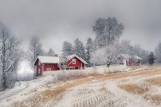 Pretty winter scene...