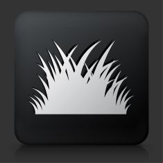 Black Square Button with Patch of Grass vector art illustration