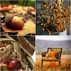 Updates, Edits, And Seasonal Color Palettes: Fall Home Decor Ideas images via #SharlaEck