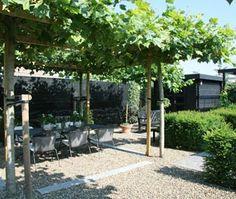 Klassieke tuin schaduwterras met dakplatanen garden landscape - Eigentijds pergola design ...