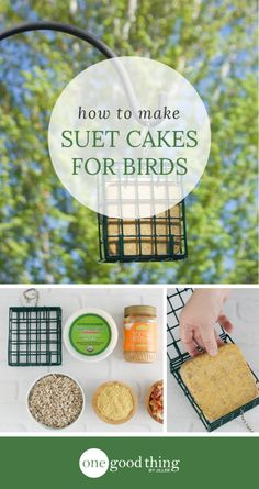 Learn how to make easy, homemade suet cakes to attract birds to your yard. You& love spotting local bird species from your kitchen window! Homemade Bird Houses, Homemade Bird Feeders, Diy Bird Feeder, Suet Recipe, Bird Suet, Suet For Birds, Suet Cakes, Bird House Kits, Bird Aviary
