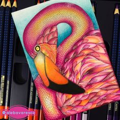 Flamingo - Tropical Wonderland by Millie Marotta