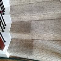 See these tips to help you on how to remove carpet stains such as how to remove blood on carpet, get red wine out of carpet and dirt and mud stains. Best Cordless Vacuum, Cordless Vacuum Cleaner, Best Vacuum For Carpet, How To Clean Carpet, Puppy Beds, Dog Bed, Cleaning Solutions, Cleaning Hacks