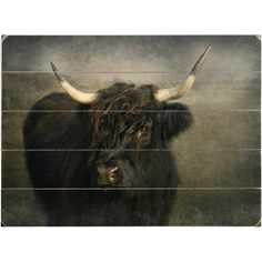 Bring a rustic touch to your walls with this stylish wood wall decor, featuring an artful portrait of a black cow.    Product: Wall...