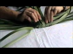 How to make a NZ flax (Phormium) kono Flax Weaving, Willow Weaving, Weaving Art, Weaving Patterns, Basket Weaving, Flax Flowers, Straw Crafts, Willow Wreath, Square Baskets