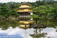 Golden pavilion Kyoto. #travel #photography #nature #photo #vacation #photooftheday #adventure #landscape