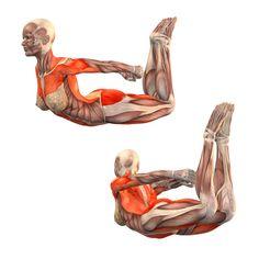 Easy bow pose - Ardha Dhanurasana - Yoga Poses   YOGA.com