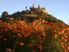 Pirámide de Cholula con flores en noviembre.