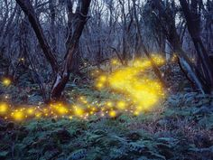 lee jeong lok makes mesmerizing natural landscapes through light painting