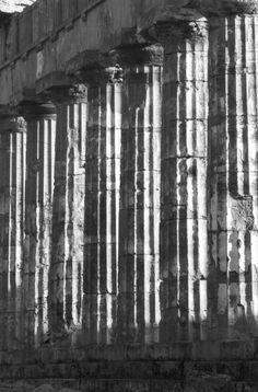 Ferdinando Scianna  ITALIA, Sicilia: Colonne doriche di un tempio di Selinunte.
