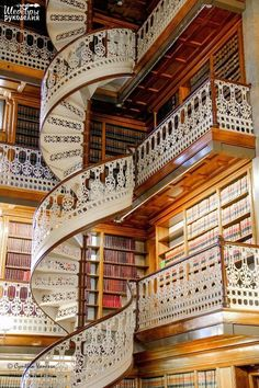 Библиотека. Флоренция, Италия