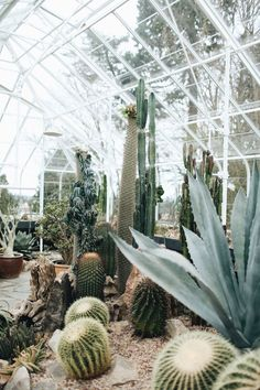 102 best greenhouse ideas images gardens green houses vivarium rh pinterest com