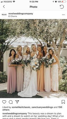 Brides dream of finding the perfect wedding ceremony, however for this they require the perfect wedding dress, with the bridesmaid's outfits complimenting the wedding brides dress. These are a few tips on wedding dresses. Wedding Images, Wedding Tips, Wedding Bride, Wedding Gowns, Wedding Day, Wedding Planning, Wedding Ceremony, Wedding Flowers, Wedding Themes