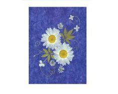 Presionado tarjetas de flores  conjunto de 6 tarjetas  toda