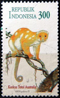 "Indonesia.  WORLD PHILATELIC YOUTH EXHIBITION/PAMERAN FILATELI REMAJA SENIA/ INDONESIA '96"". AUSTRALIAN SPOTTED CUSCUS.  Scott 1642a A458a,  Issued 1996 Mar 22,  Photo., Perf. 13 x 13 1/2, 45. /ldb."