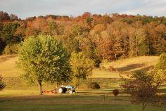 20 Burkesville Ky Ideas Cumberland River Cumberland Cumberland County