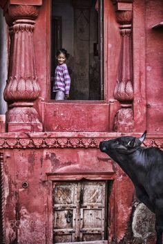 India my love .... -