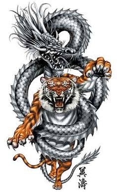 The dragon is wrapping its wisdom around the tiger and guiding it as it leaps into battle.