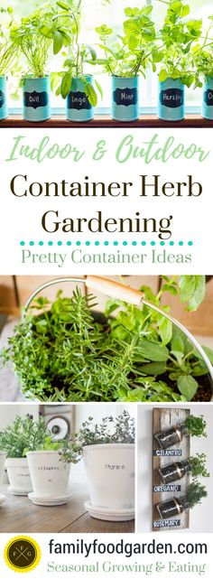 Beautiful Container Herb Gardens - Family Food Garden Lots of indoor herb garden ideas. Indoor herb gardens, container herb gardens and indoor grown kitchen herbs. Herb gardens are easy to grow Kitchen Herbs, Herb Garden In Kitchen, Herbs Garden, Diy Herb Garden, Garden Paths, Hydroponic Gardening, Organic Gardening, Vegetable Gardening, Indoor Herb Gardening