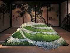 Daniel Ost's Floral Art
