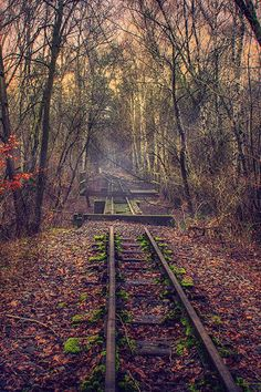 Tracks...Dirk Voigt